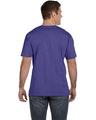 LAT 6901 Purple