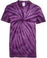 Dyenomite 20BCY Purple