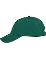 Ash City - Core 365 CE001 Forest Green