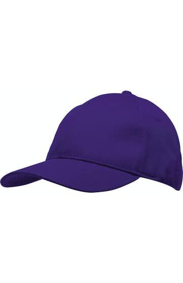 Bayside BA3660 Purple