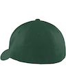 Port Authority C865 Forest Green