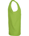 Delta 21734 Lime
