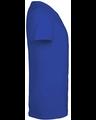 Delta 11736 Cali Blue