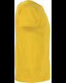 Delta 11000 Sunflower